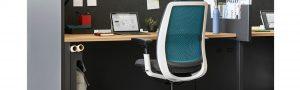 Amia - silla protección lumbar - Dinof